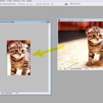 Как в фотошопе кадировать и сохранять изображения в разных форматах